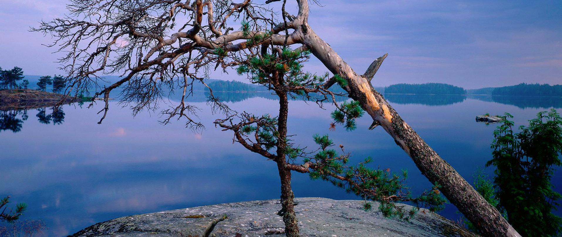 Saimaa – geologinen aikakone